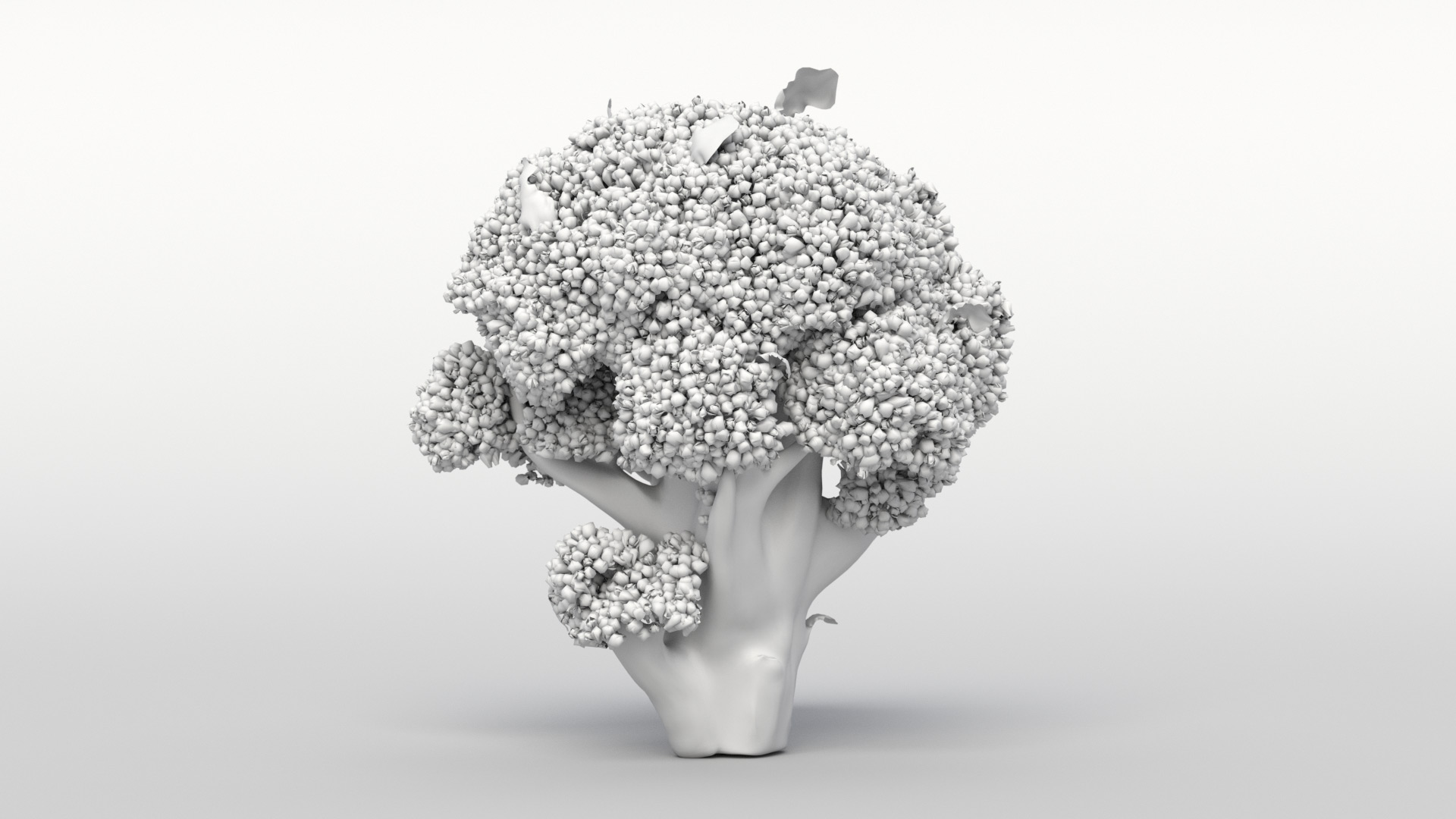 Brokoli_turntable_00000